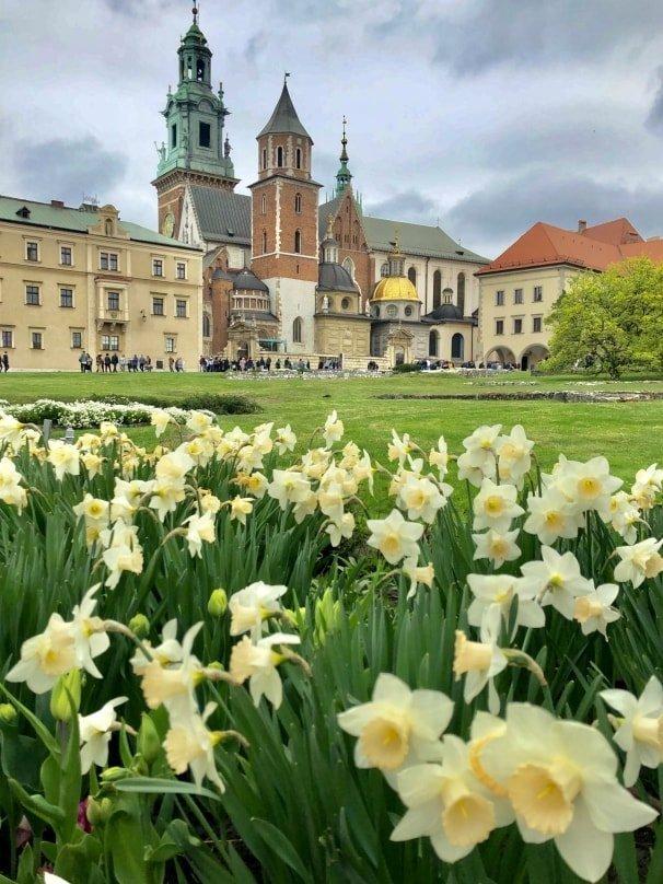 Collina di Wawel e vista della cattedrale